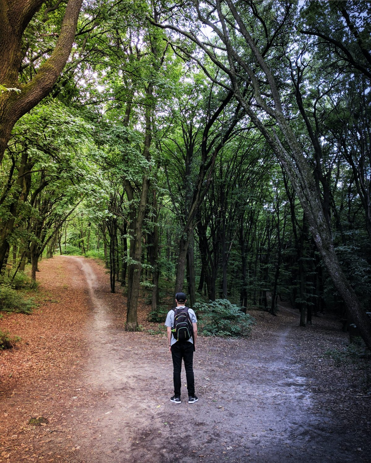 Photo of a man standing in the woods at a fork in the road